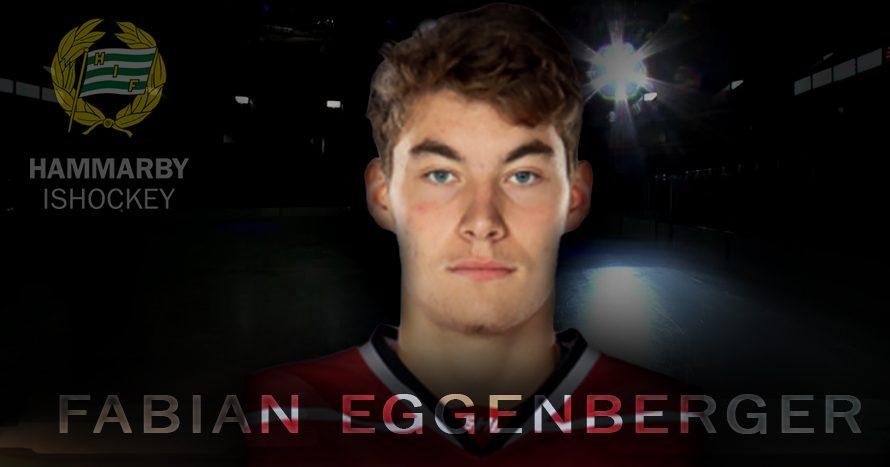 Fabian Eggenberger